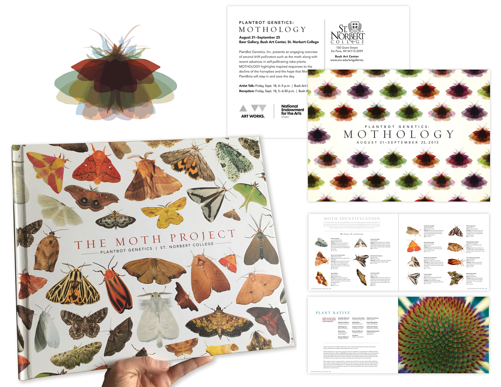 Moth Project, Jarred Elrod, Design
