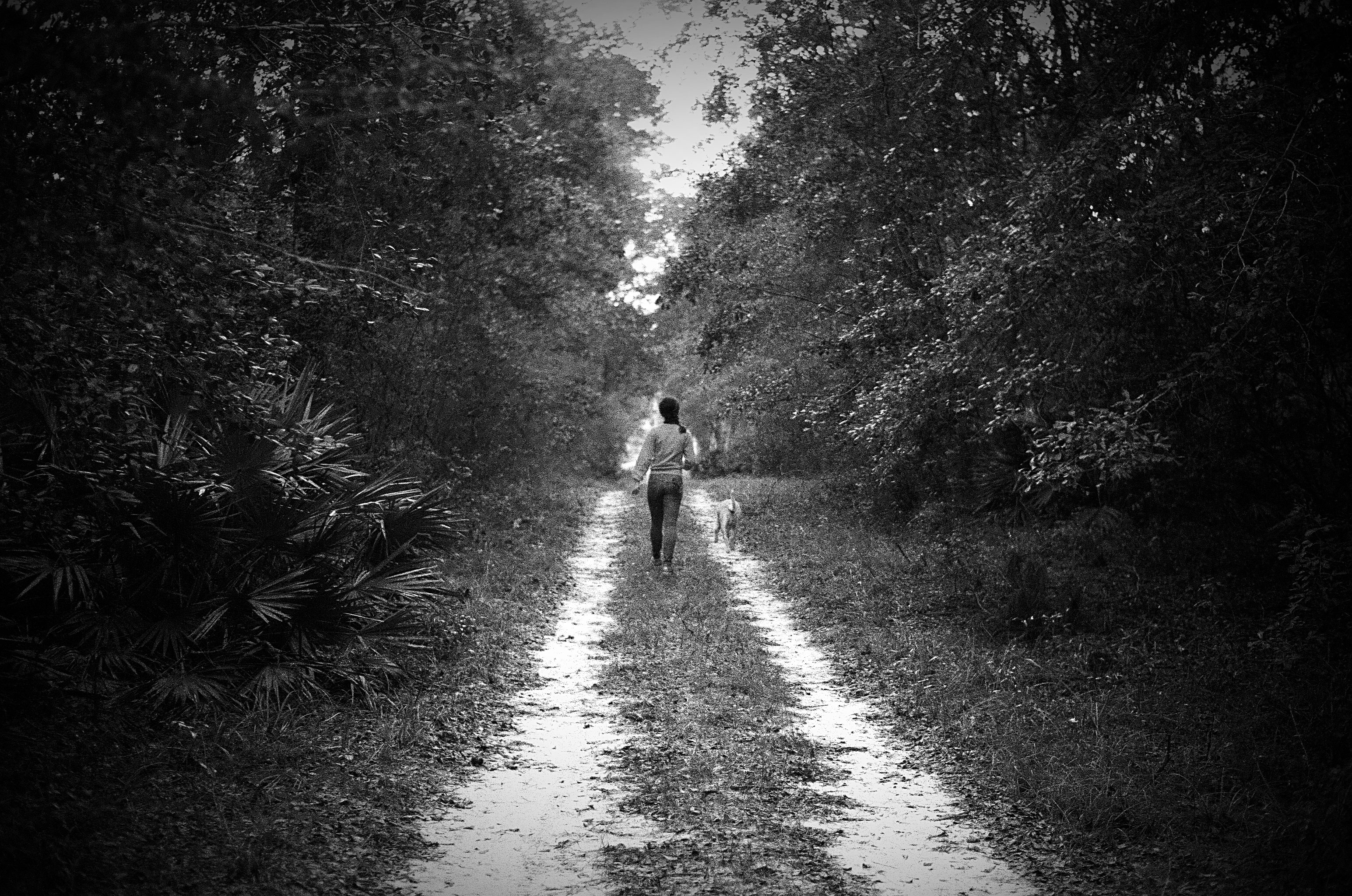 film photo, florida road, jarred elrod